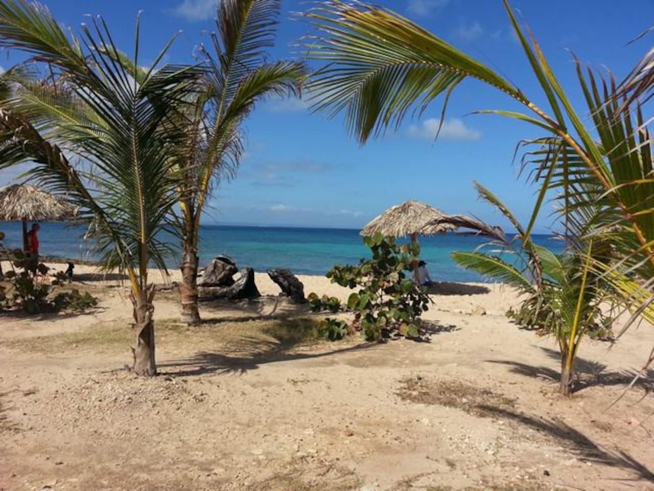 Apartment Casa Oceanview 2 - Luxury   Amazing View photo 23409023