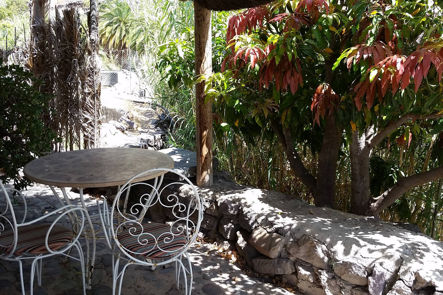 Apartment Heaven close to Nature and Ocean in quiet setting photo 28612820