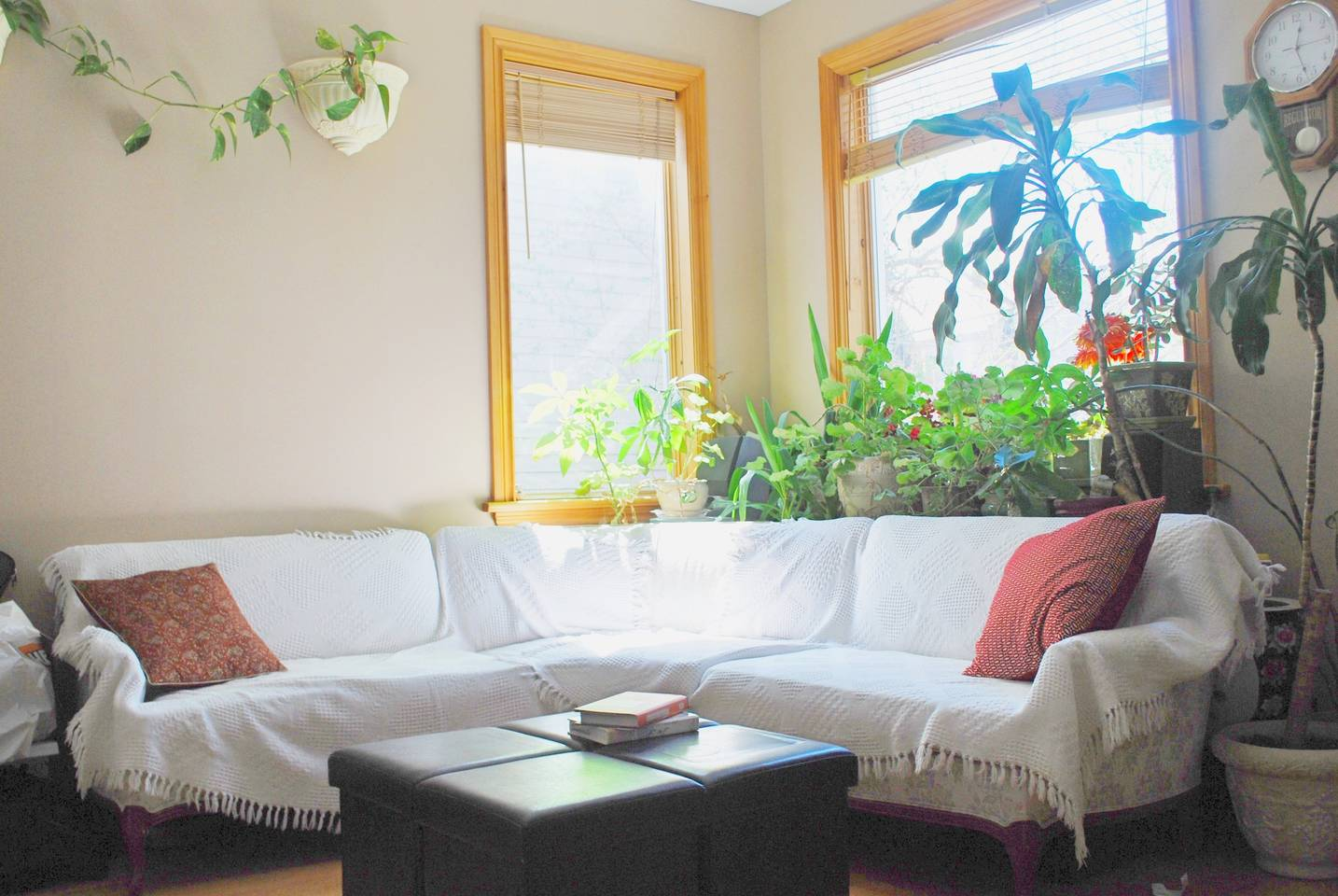 Charming, Modern ,Affordable by the Canal, Room 1 photo 18482210