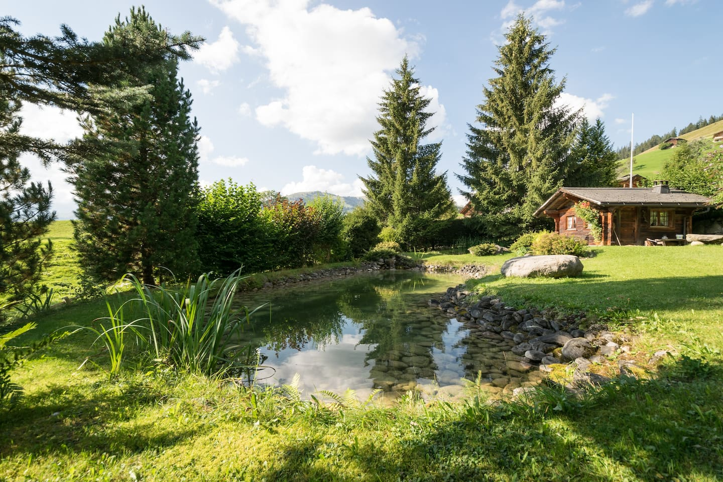 Gstaad Duplex Flat - Amazing Lake Chalet with pond photo 26007890