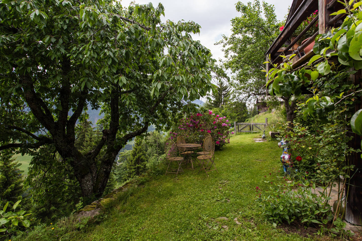 Apartment Gstaad -  Paradise View  Chalet photo 25613072