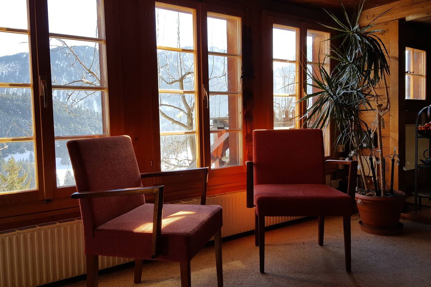 Apartment Gstaad -  Paradise View  Chalet photo 25601761