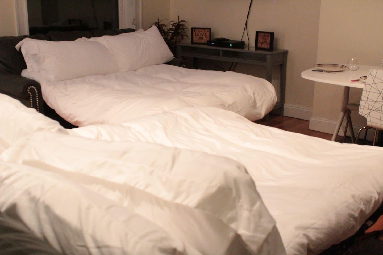 Apartment Luxe Condo Back Bay Boston-3 Bedrooms   2 Baths photo 16814050