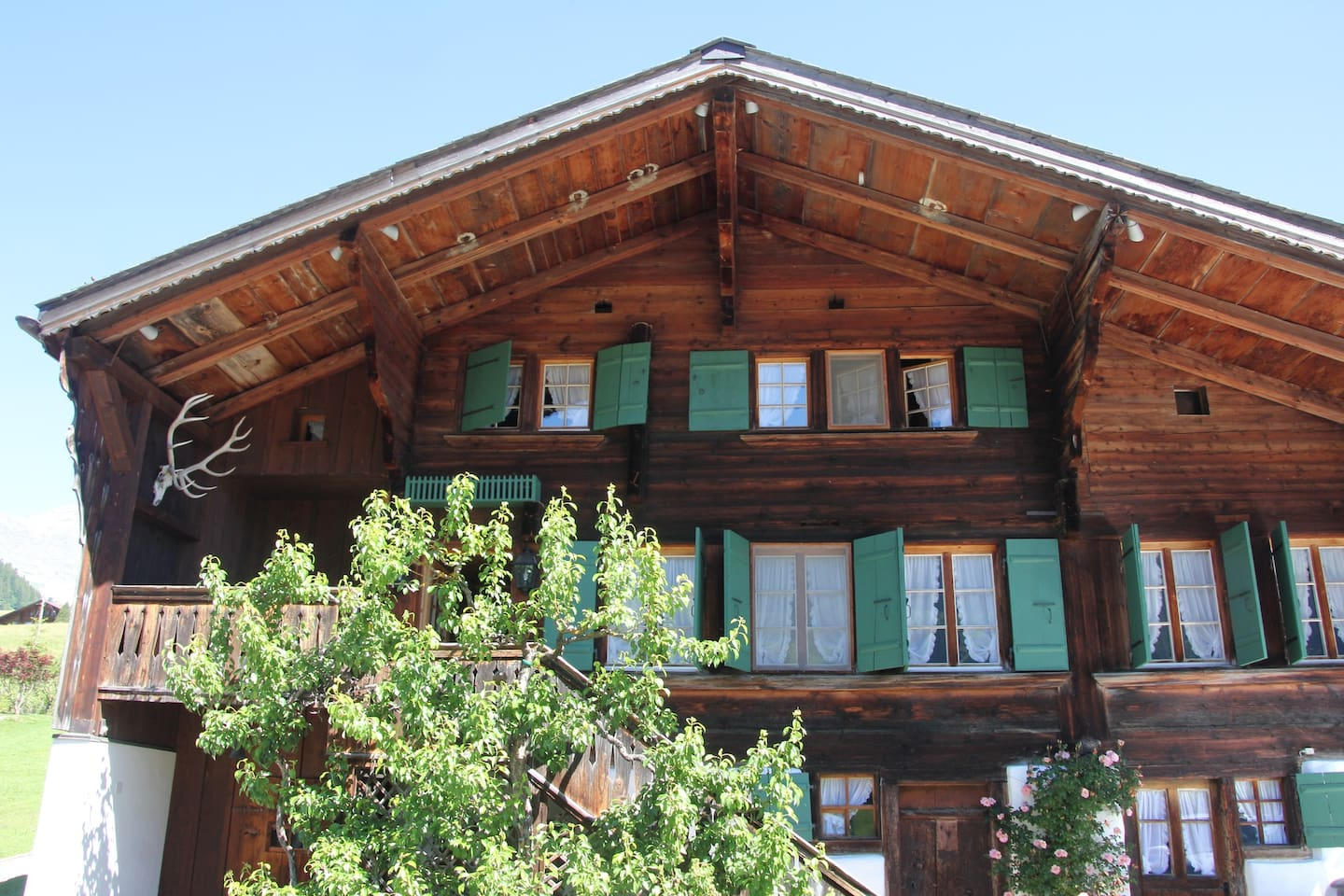 Greatly Renovated 400 Year Old Chalet near Gstaad photo 25938878