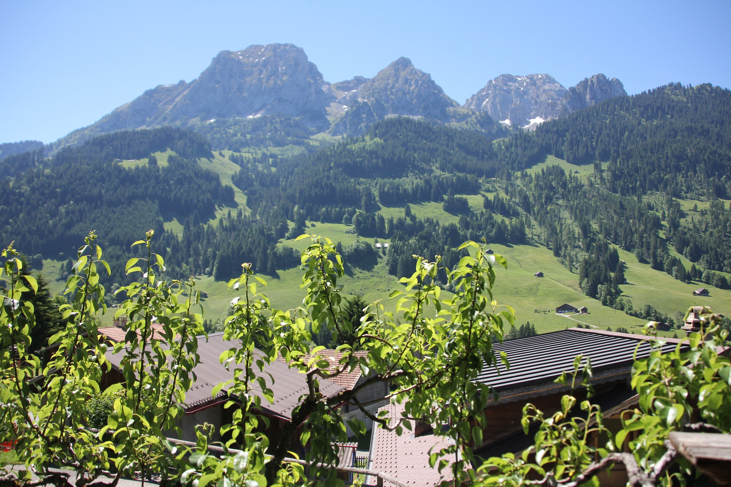Apartment Greatly Renovated 400 Year Old Chalet near Gstaad photo 25938877