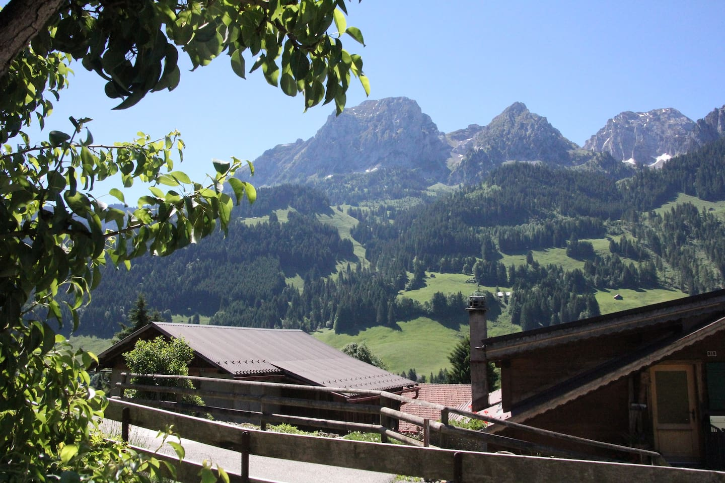 Apartment Greatly Renovated 400 Year Old Chalet near Gstaad photo 25938888