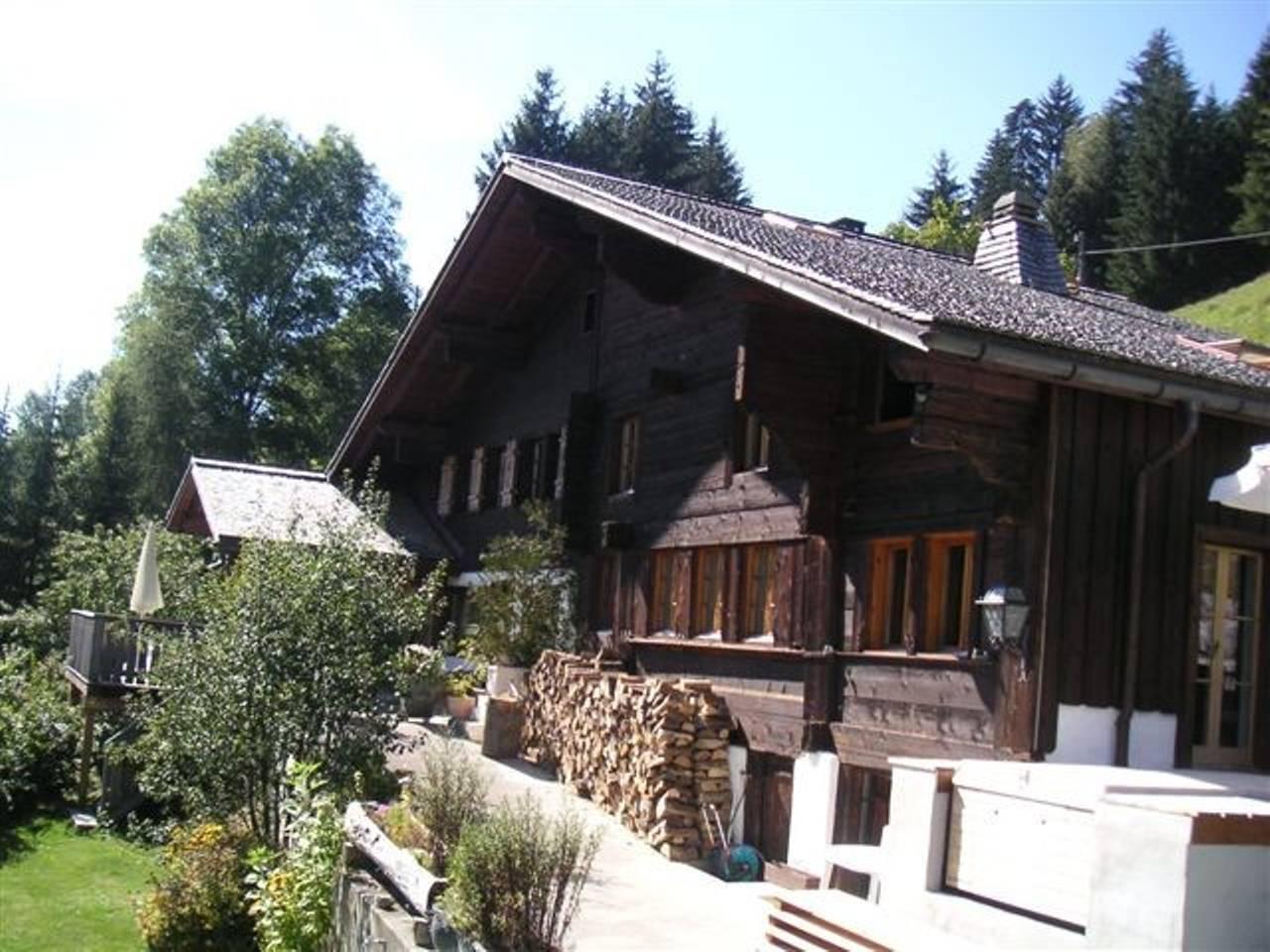 Apartment The Alps Wonder Chalet photo 25568371