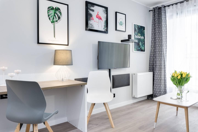 Modern Studio Apartment photo 18402619