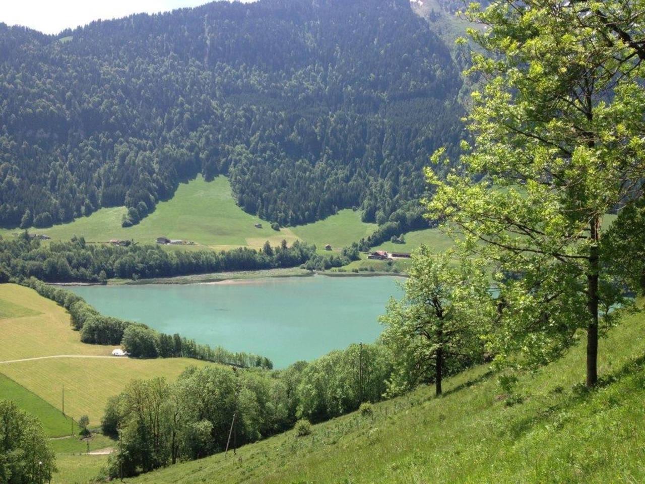 Heidi Chalet Alps - Unique Experience photo 28306501