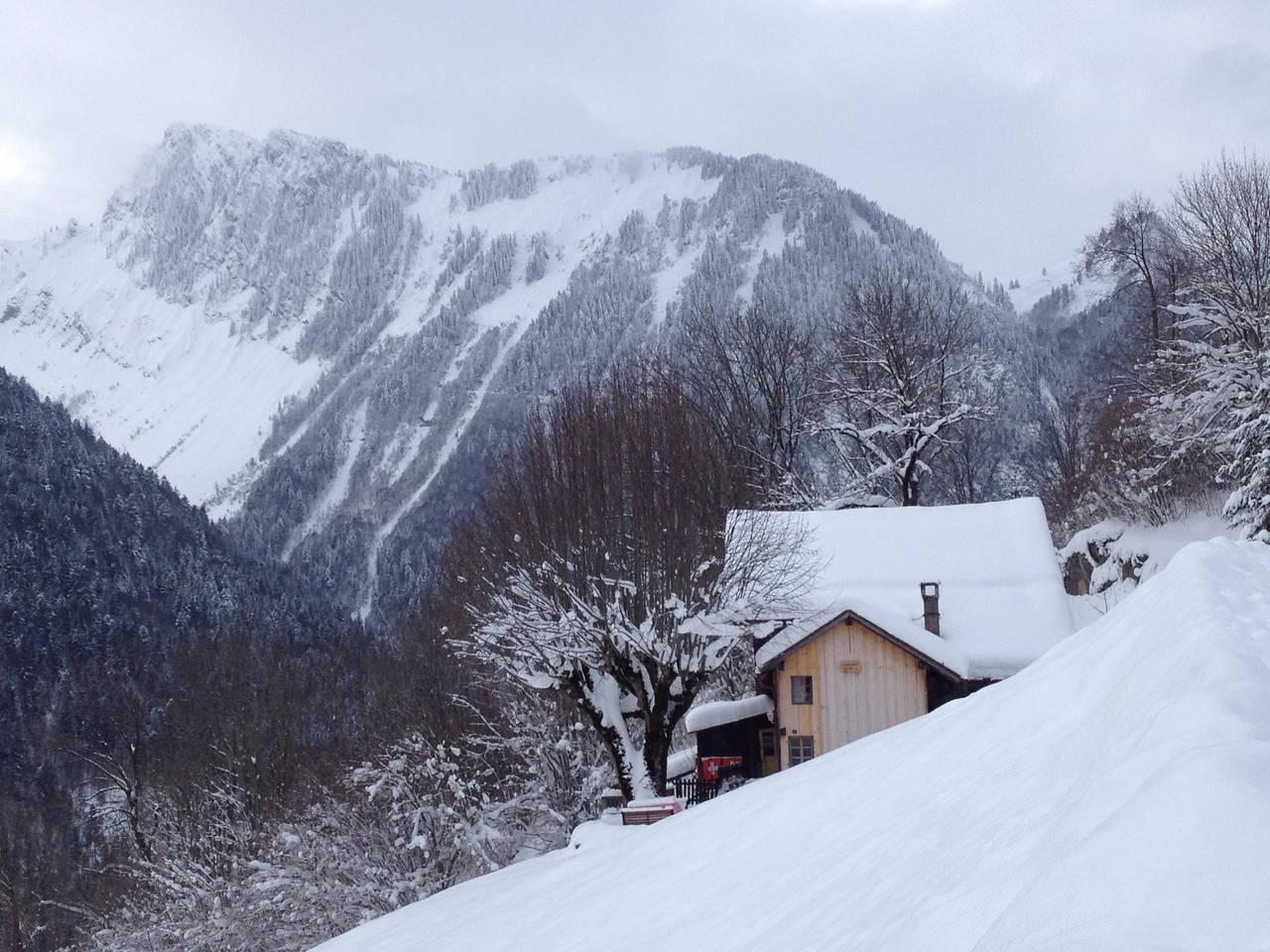 Apartment Heidi Chalet Alps - Unique Experience photo 28306522