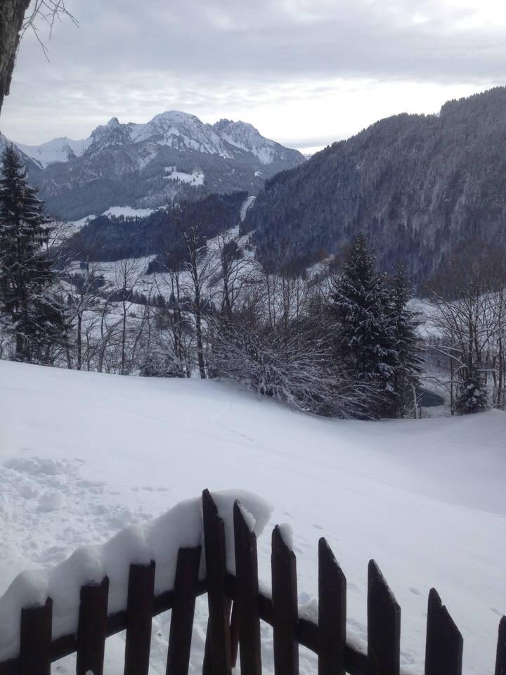 Apartment Heidi Chalet Alps - Unique Experience photo 28306530