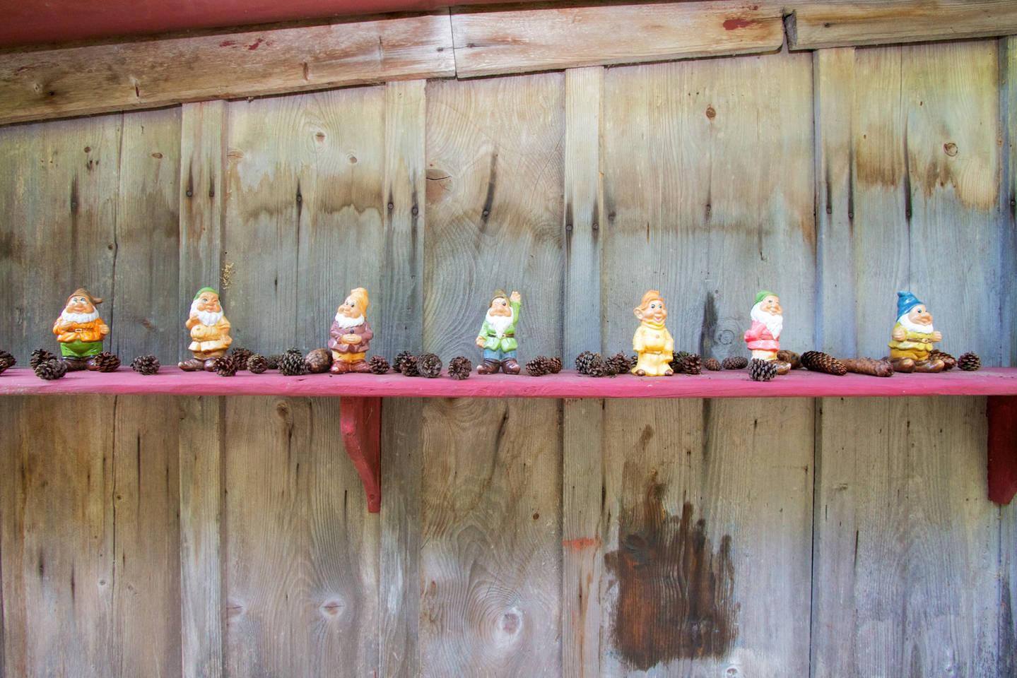 Apartment Heidi Chalet Alps - Unique Experience photo 28306542