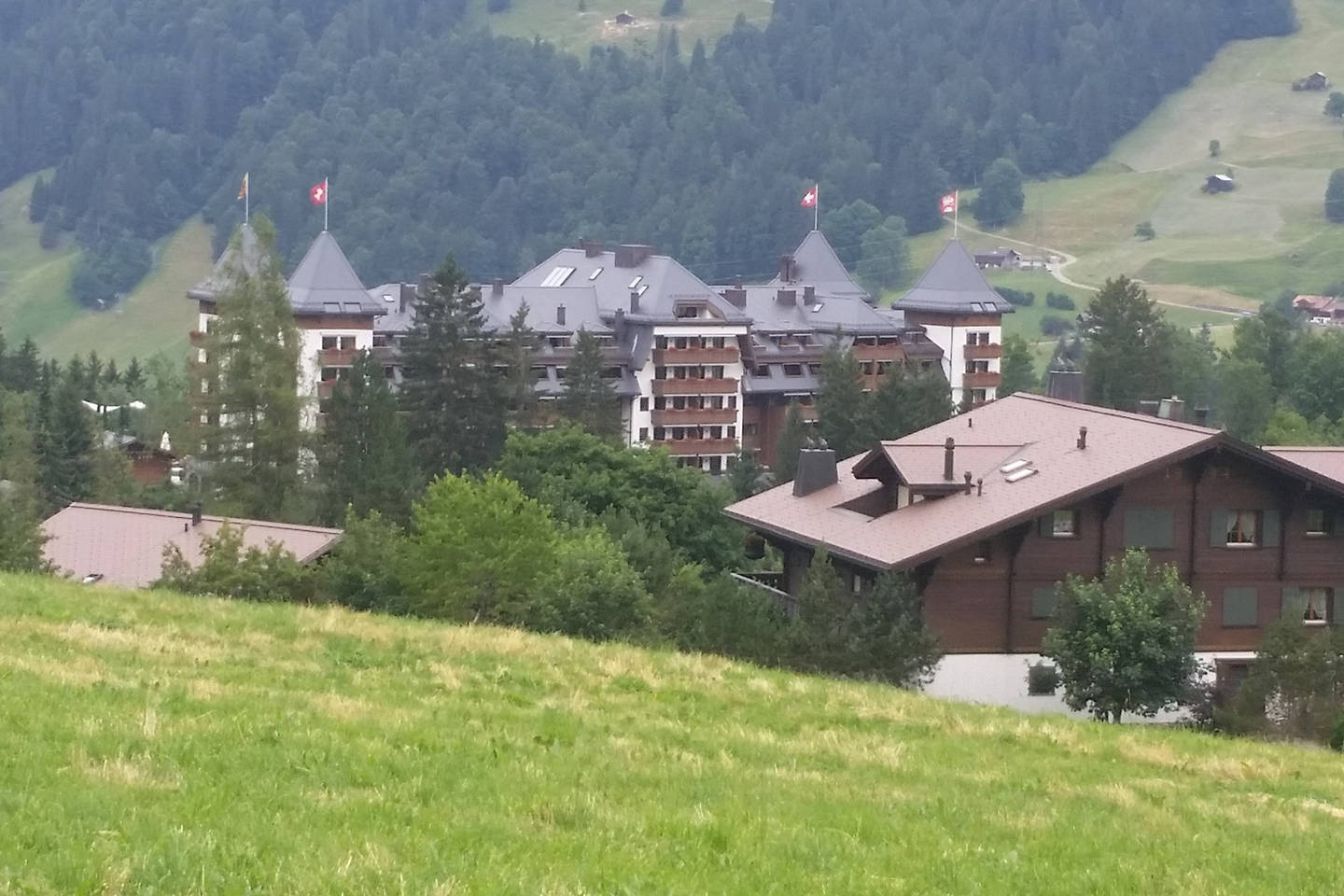 Apartment Gstaad Duplex Flat - Amazing Lake Chalet with pond photo 26049780