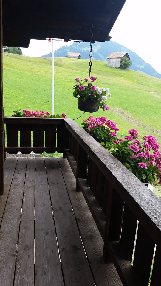 Apartment Gstaad Duplex Flat - Amazing Lake Chalet with pond photo 26049802