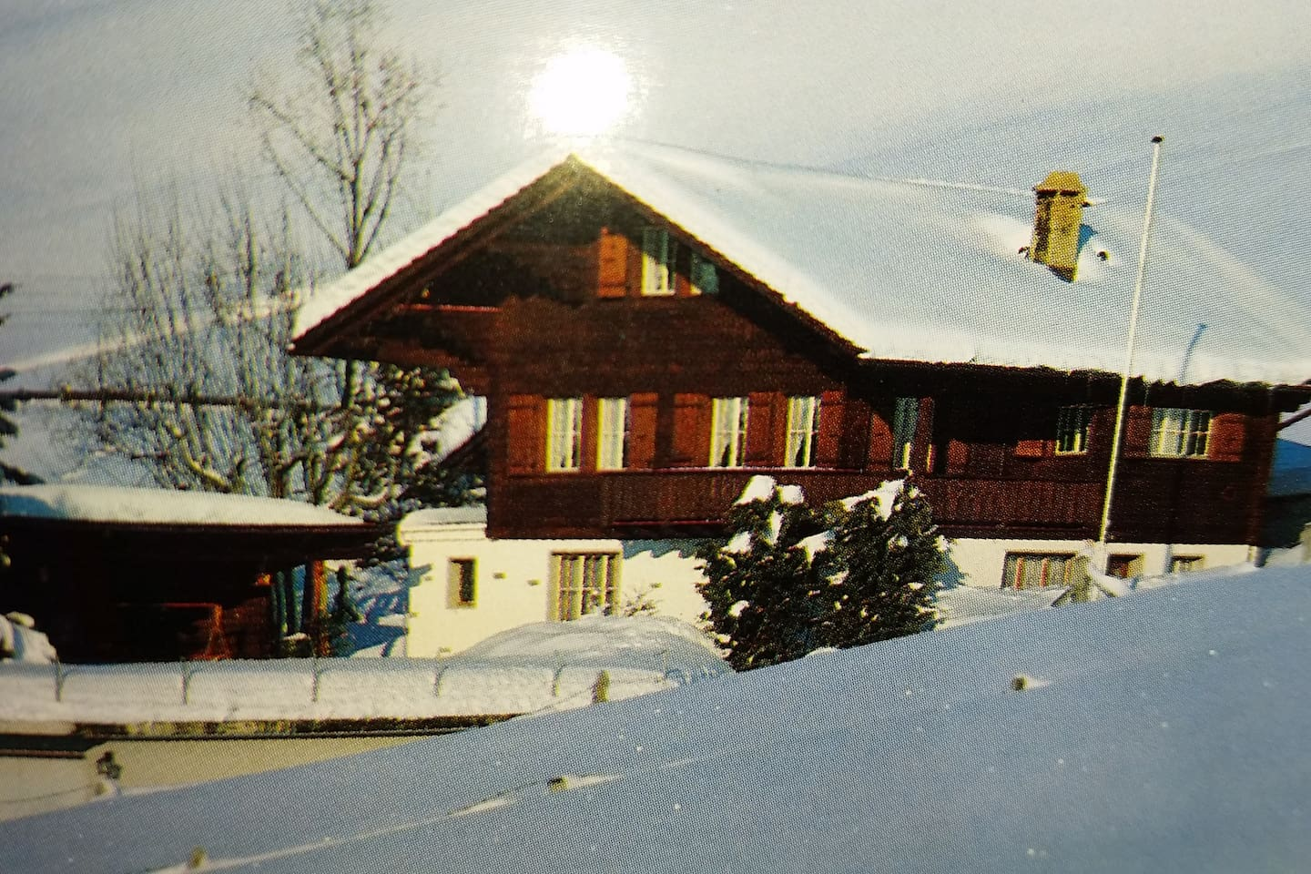 Apartment Gstaad Duplex Flat - Amazing Lake Chalet with pond photo 26049804