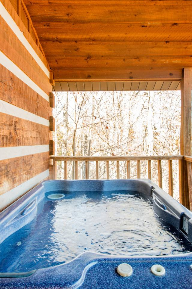 Apartment Very Private Mountain-View Log Cabin with Hot Tub photo 18387955