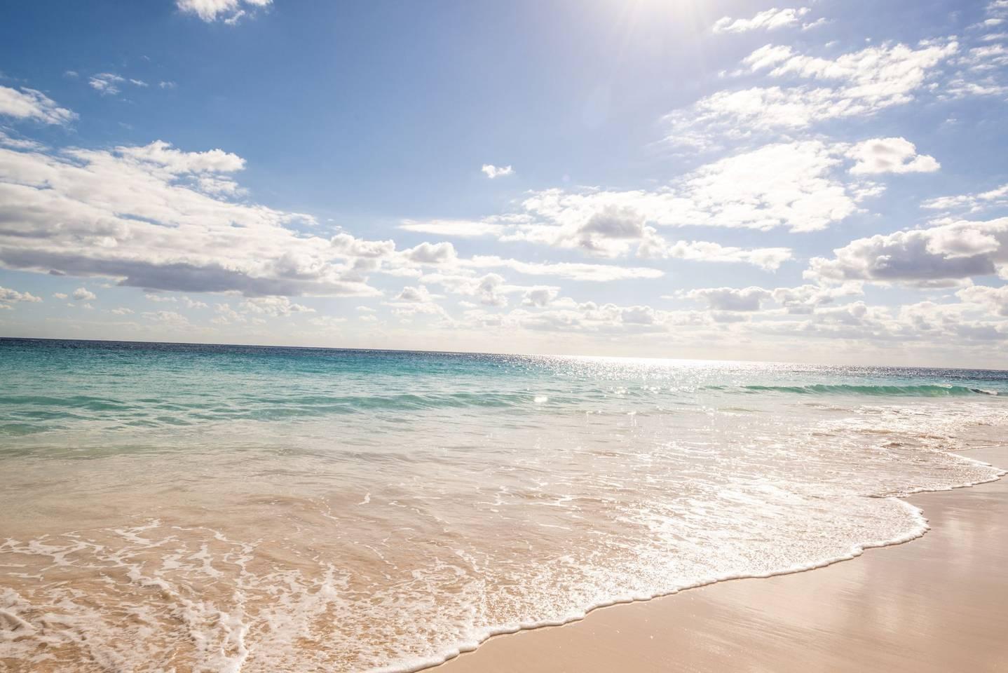 Double unit, Miami Beach, 2 mins to Ocean! photo 10965434
