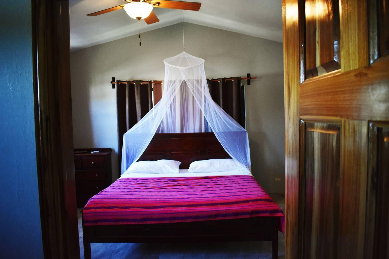 Apartment Entire top floor on San Ignacio Hilltop photo 28621253