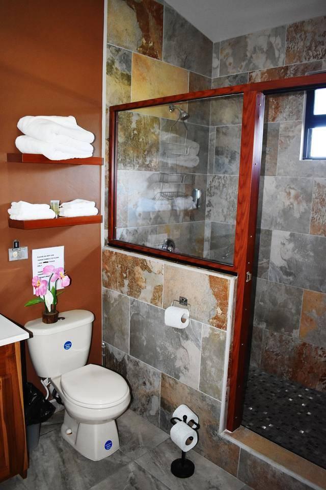 Apartment Entire top floor on San Ignacio Hilltop photo 28644746