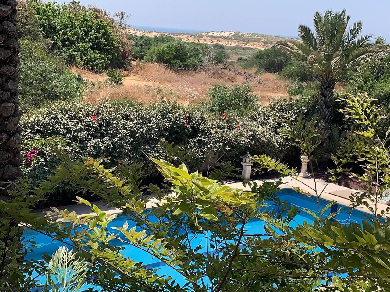 Apartment Dream house by the sea in Caesarea photo 25970046