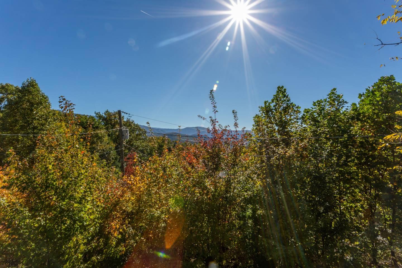 Apartment Stylish Decor Mountain View 3 6 Miles to DwTn Gat photo 18765195